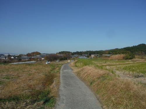 グラベルロードで奈良散歩_b0332867_21123182.jpg