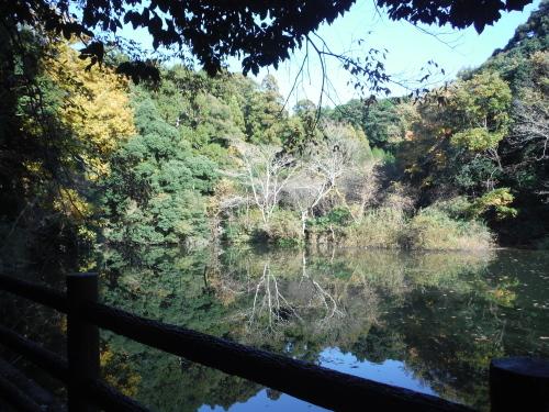 グラベルロードで奈良散歩_b0332867_21132972.jpg