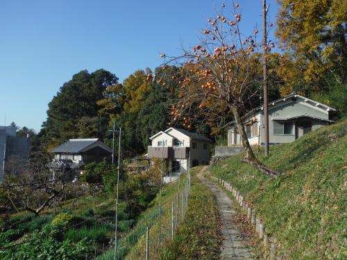 グラベルロードで奈良散歩_b0332867_21170066.jpg