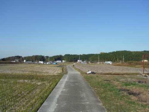 グラベルロードで奈良散歩_b0332867_21245546.jpg