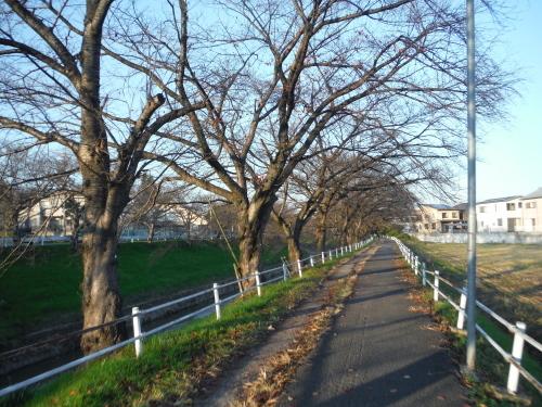 グラベルロードで奈良散歩_b0332867_21305414.jpg