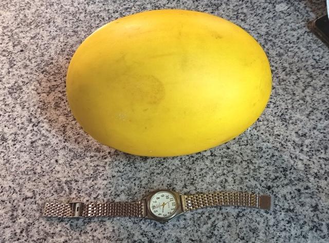 「瓜」を買って来た_d0083068_14031042.jpg