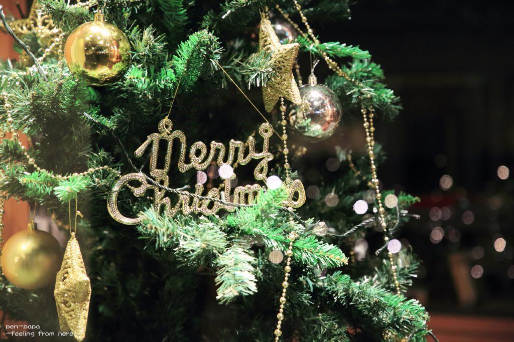 Merry Christmas_c0356480_20233706.jpg