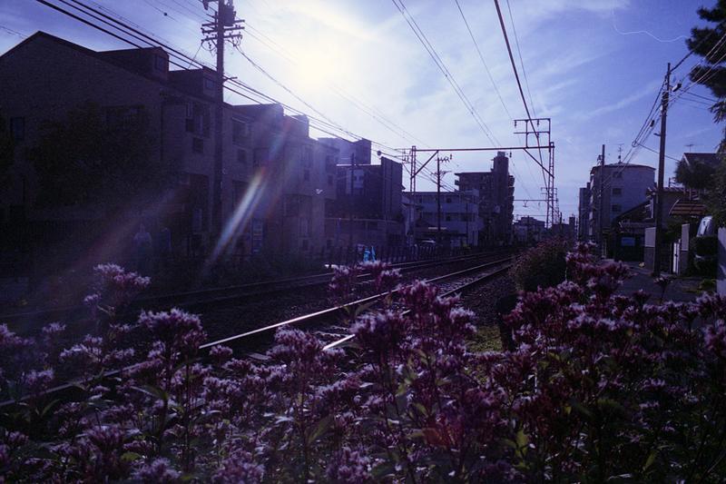 期限切れ12年物フィルムで撮った風景_f0159784_22593993.jpg