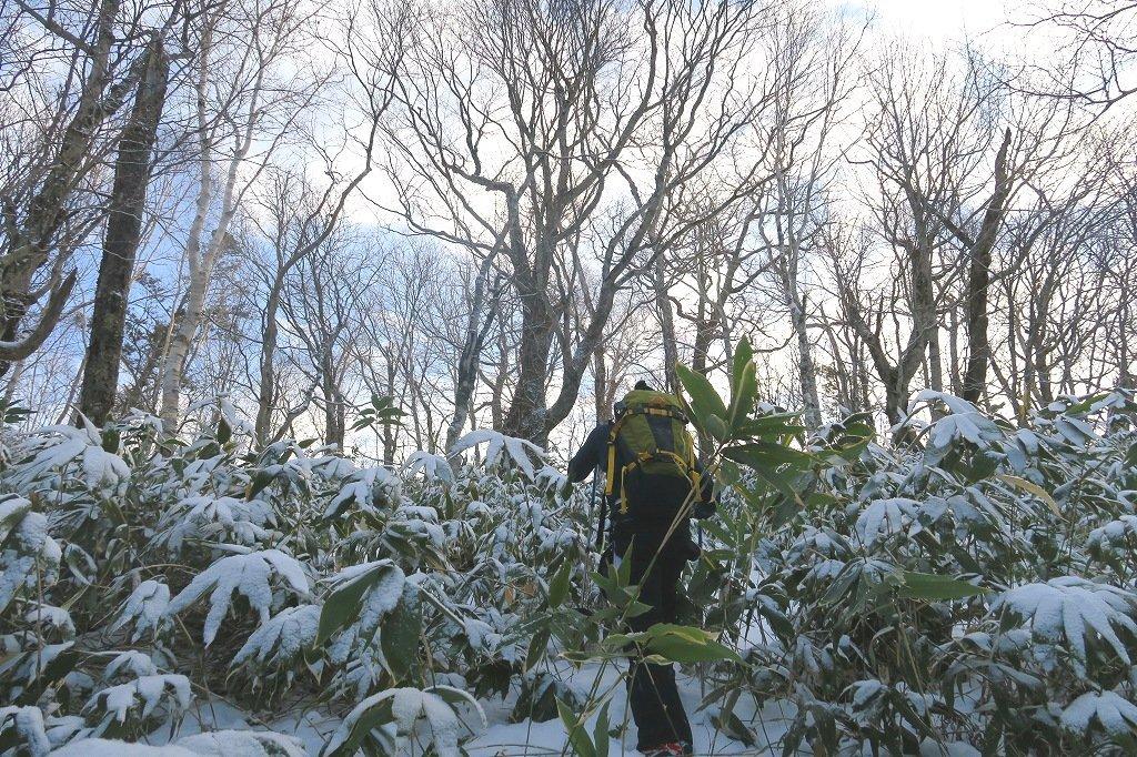 雪の少ないイチャンコッペ山、2019.12.20_f0138096_21585530.jpg