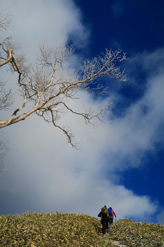 雪の少ないイチャンコッペ山、2019.12.20_f0138096_21591292.jpg