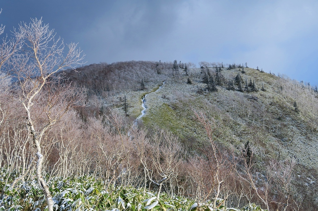 雪の少ないイチャンコッペ山、2019.12.20_f0138096_22000980.jpg