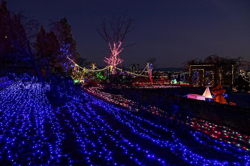 クリスマスイルミネーション@びわ湖大津館 2019イルミネーション「光のおもちゃの世界」_f0032011_17390801.jpg