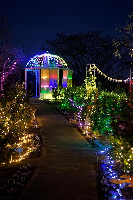 クリスマスイルミネーション@びわ湖大津館 2019イルミネーション「光のおもちゃの世界」_f0032011_17391011.jpg