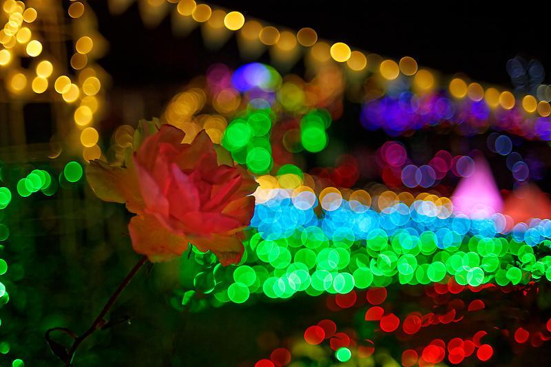 クリスマスイルミネーション@びわ湖大津館 2019イルミネーション「光のおもちゃの世界」_f0032011_17411985.jpg
