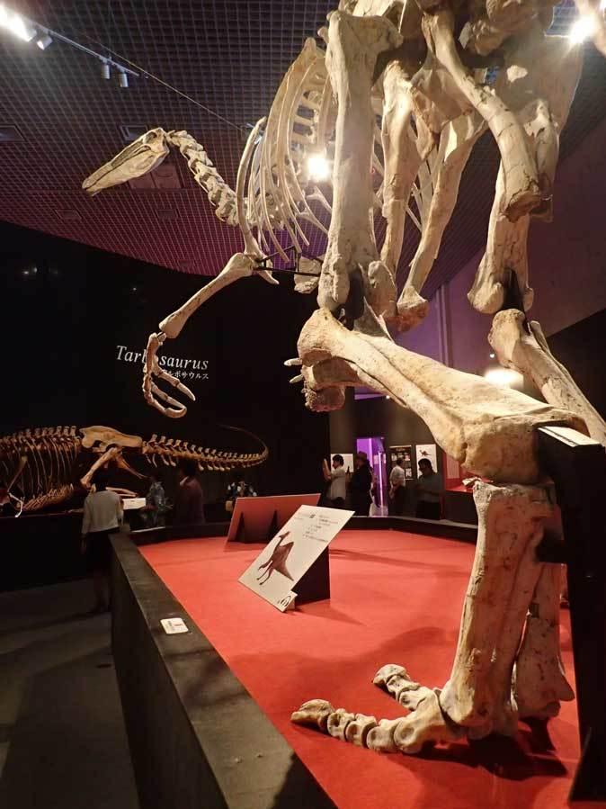 恐竜博2019~デイノケイルス【後編】_b0355317_21464664.jpg