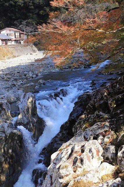 古座川 滝の拝散策(撮影:12月3日)_e0321325_09403362.jpg