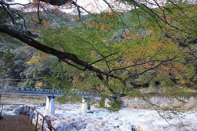 古座川 滝の拝散策(撮影:12月3日)_e0321325_09434465.jpg