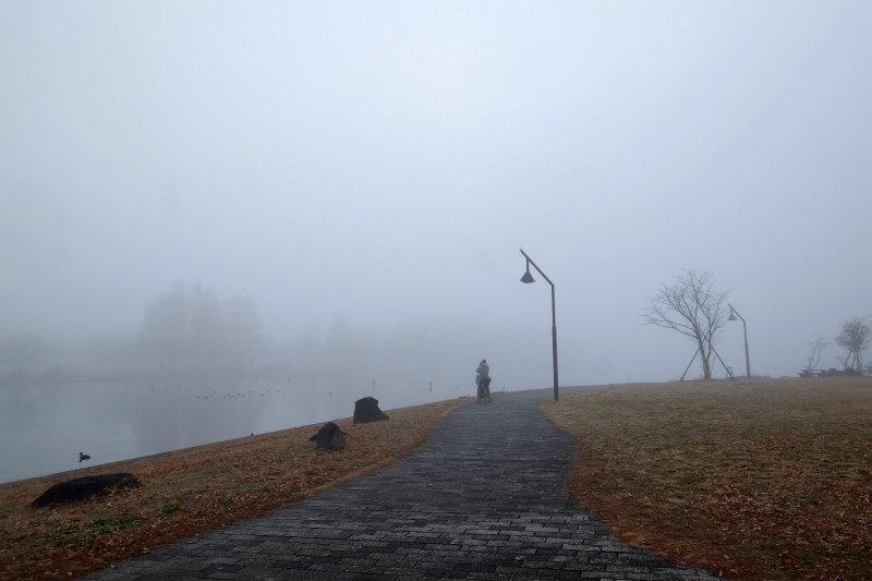朝靄の中で_d0338526_23504690.jpg