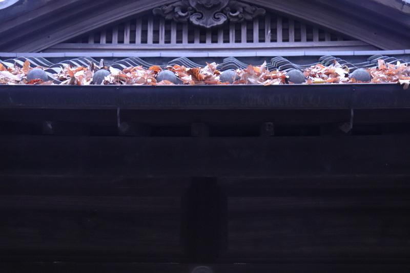 続「江戸たてもの園」の木造建築。_a0214329_1442458.jpg