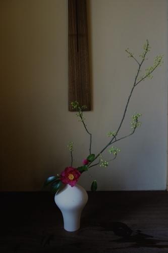 椿の季節_a0197730_23384780.jpeg