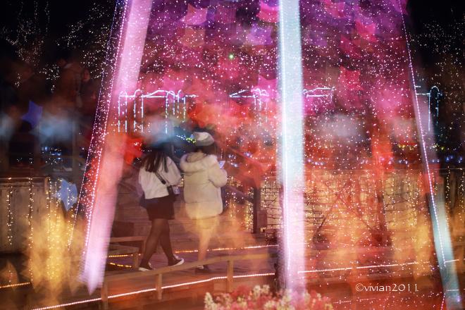 あしかがフラワーパーク撮影会 ~今年も見事なイルミネーション~_e0227942_00055866.jpg