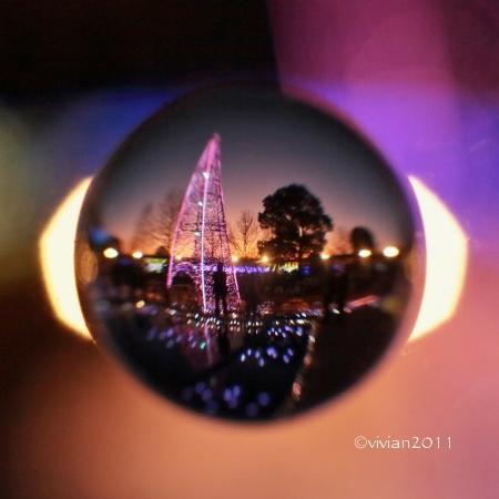 あしかがフラワーパーク撮影会 ~今年も見事なイルミネーション~_e0227942_00075410.jpg