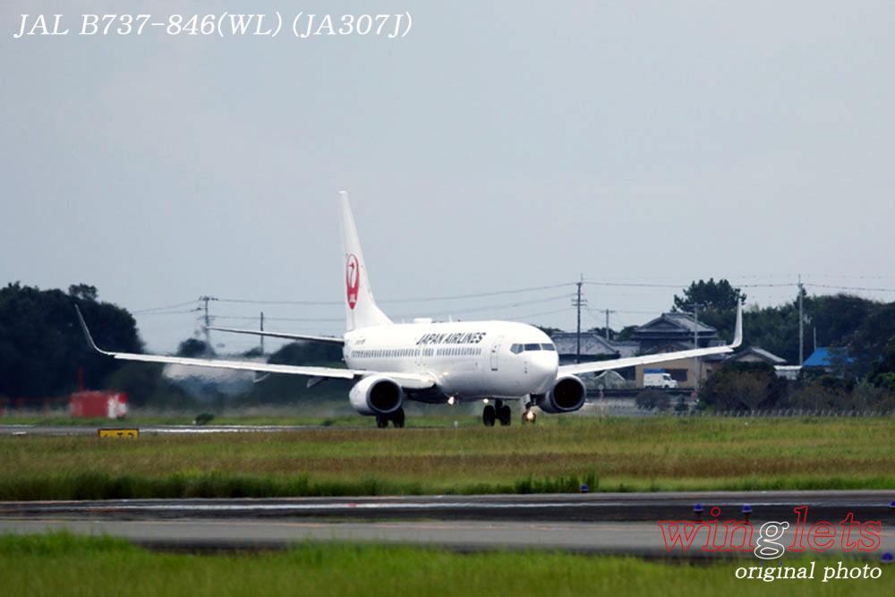 '19年 高知空港レポート ・・・ JAL/JA307J_f0352866_18205886.jpg