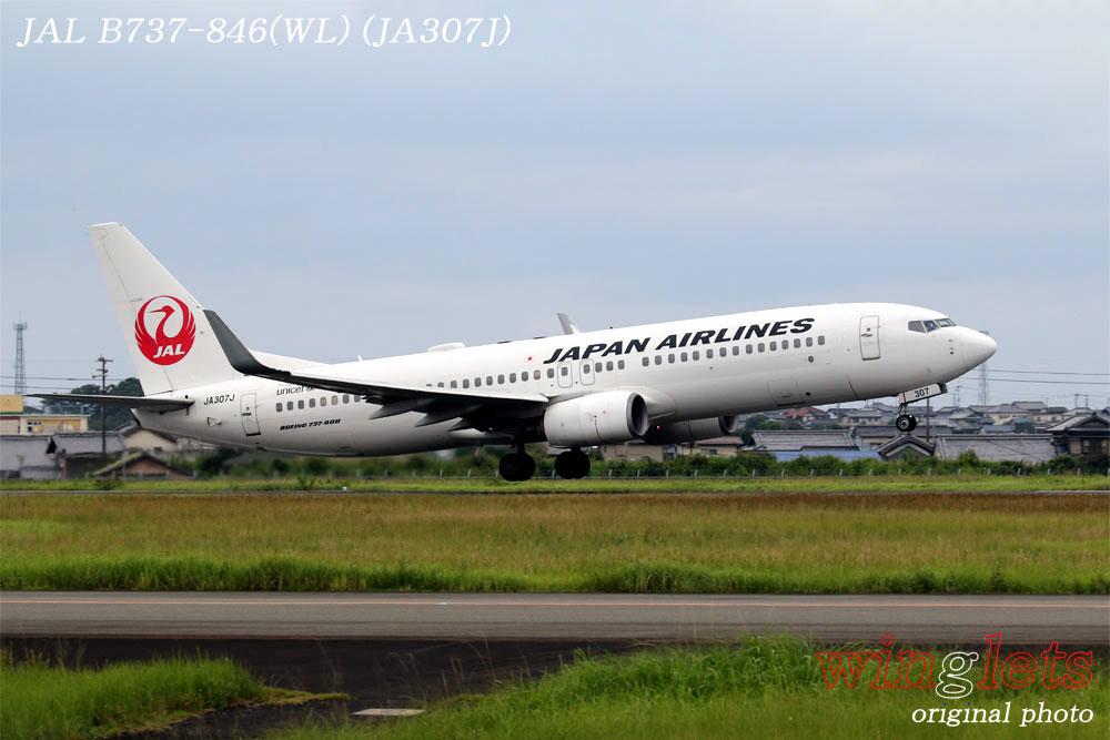 '19年 高知空港レポート ・・・ JAL/JA307J_f0352866_1821935.jpg