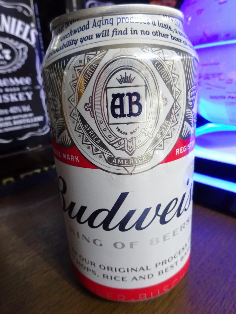 家で飲んだ一番搾り以外のビール 2019!_d0061678_17165205.jpg