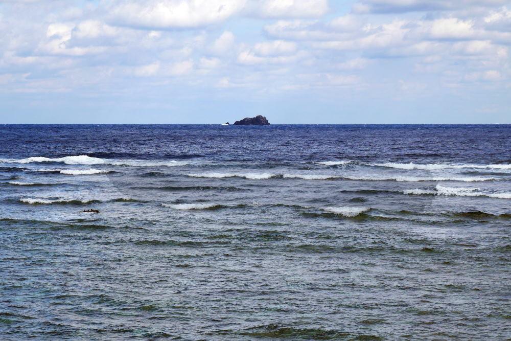 奄美大島の旅 3日目_c0252688_00130602.jpg