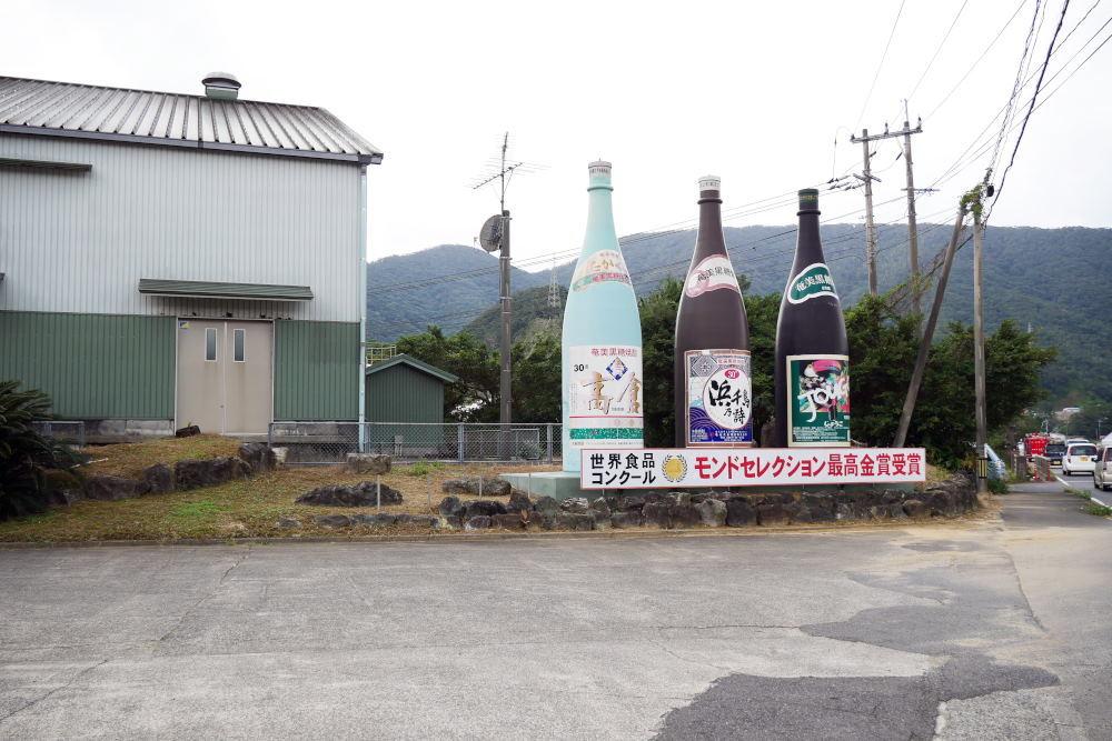 奄美大島の旅 3日目_c0252688_13441034.jpg