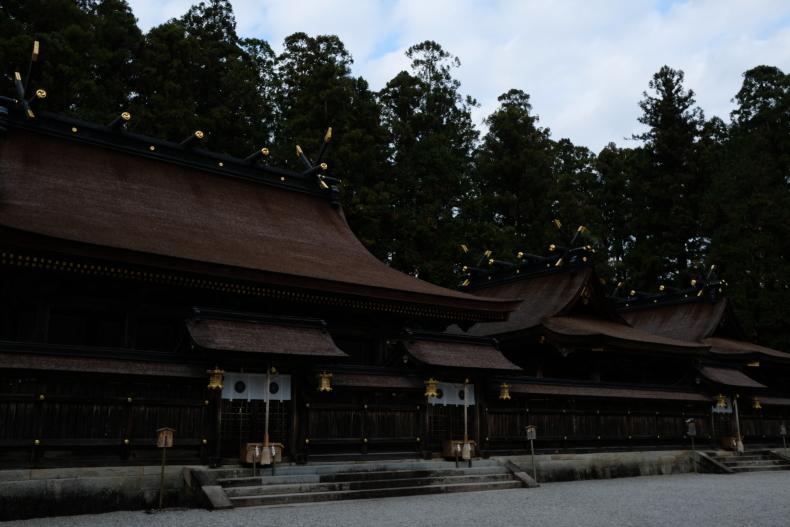 冬というのに20℃になった熊野_b0391989_21122333.jpg