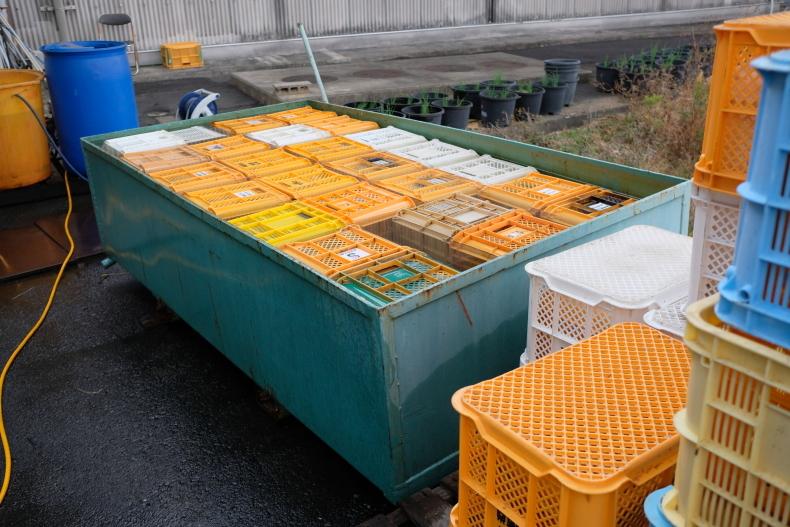 冬というのに20℃になった熊野_b0391989_21153012.jpg