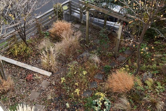 冬至直前の12月18日の庭。_c0124100_17361675.jpg