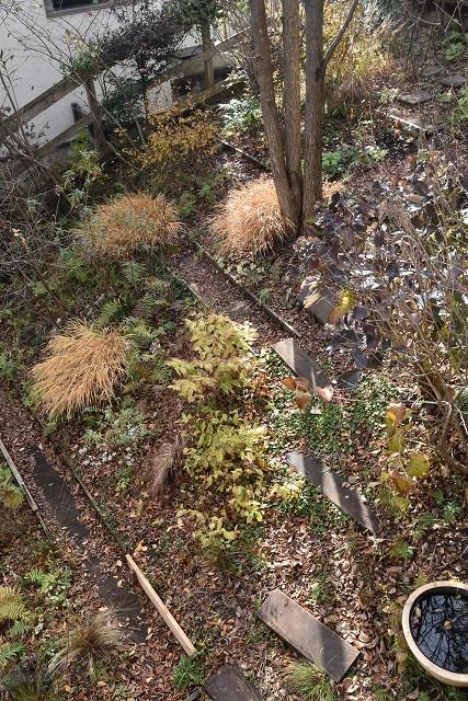 冬至直前の12月18日の庭。_c0124100_17362695.jpg