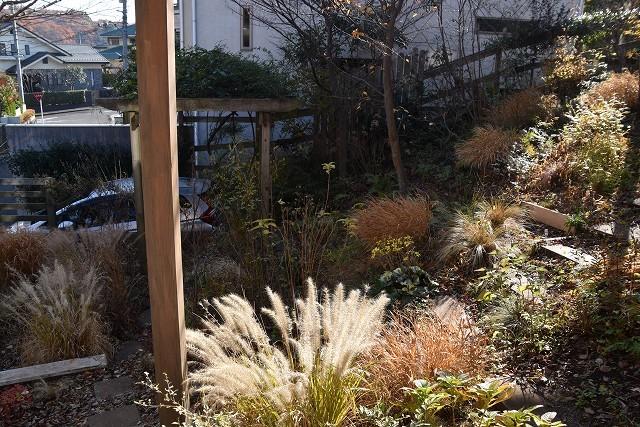 冬至直前の12月18日の庭。_c0124100_17381214.jpg