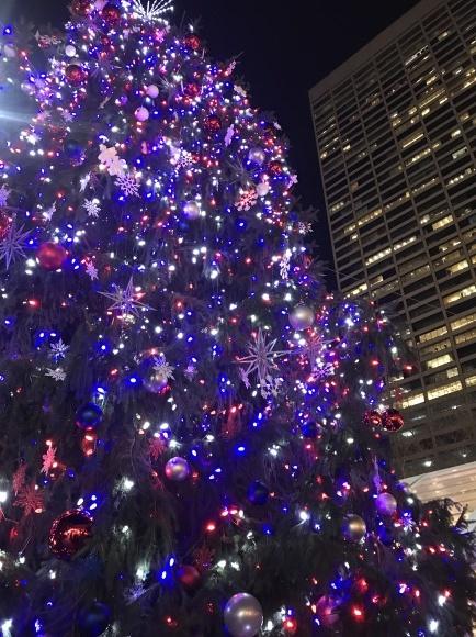 ニューヨーク冬の名所ブライアントパーク_b0130809_03424693.jpeg
