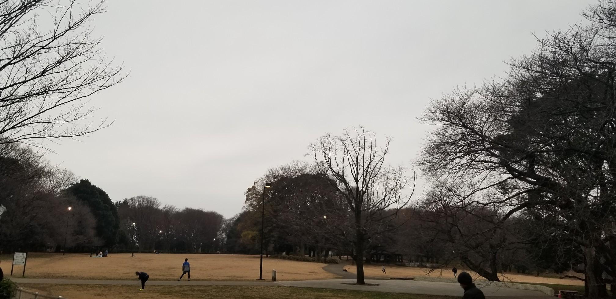 ♪砧公園散策~忘年会_d0162225_00024288.jpg
