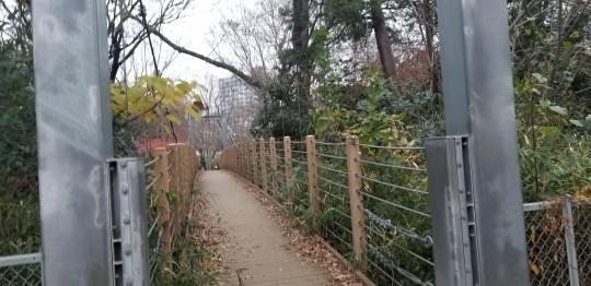 ♪砧公園散策~忘年会_d0162225_00024622.jpg