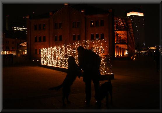 夜散歩のこと、もう少し・・・_f0363141_06515577.jpg