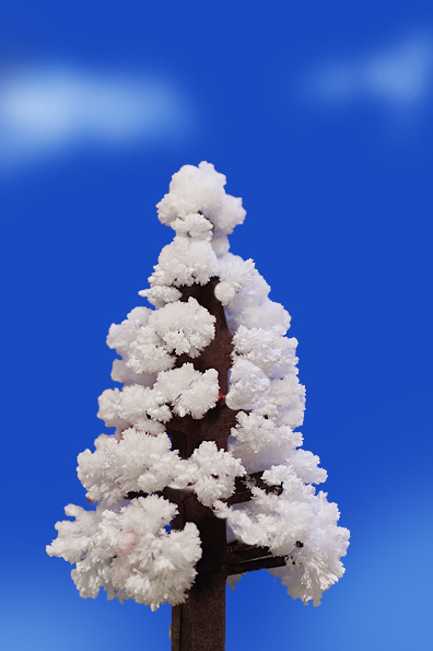 最高の雪山_b0130243_19541109.jpg