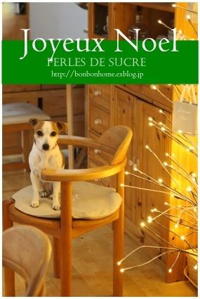 クリスマスの準備・・_f0199750_17481821.jpg