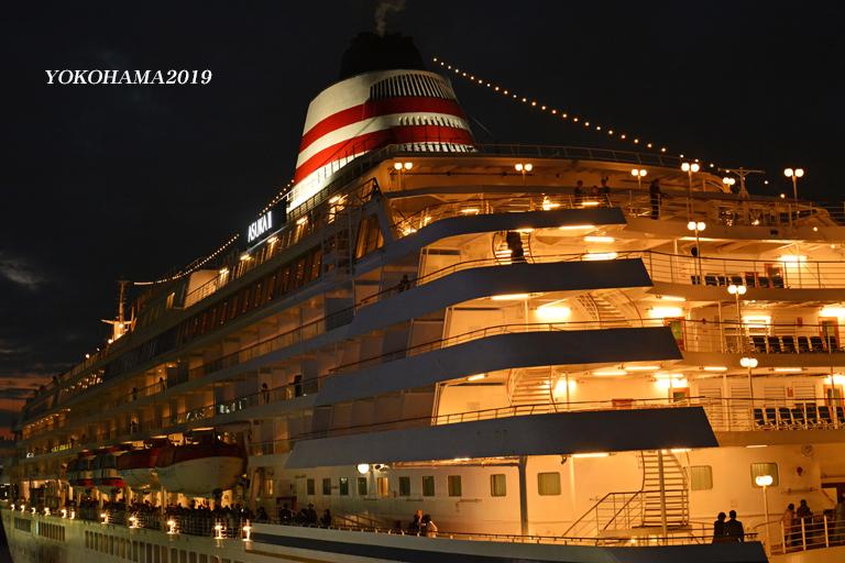 豪華客船お見送り『そうだ 横浜、行こう』②_d0251161_10261080.jpg