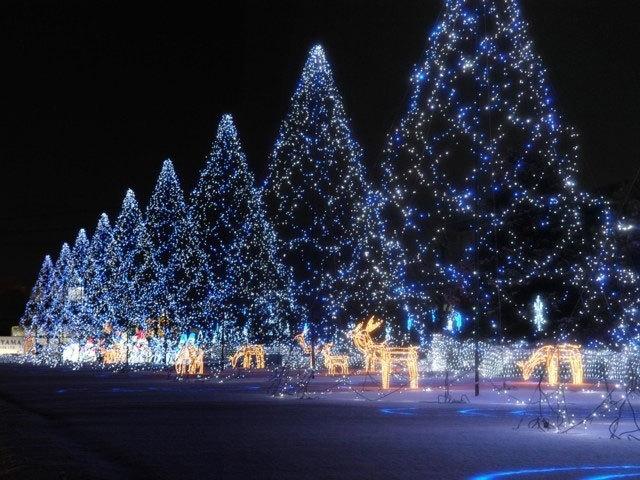 ☆彡Merry Christmas☆彡_d0099965_09141810.jpg