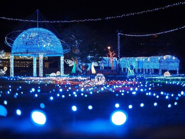 ☆彡Merry Christmas☆彡_d0099965_09184410.jpg