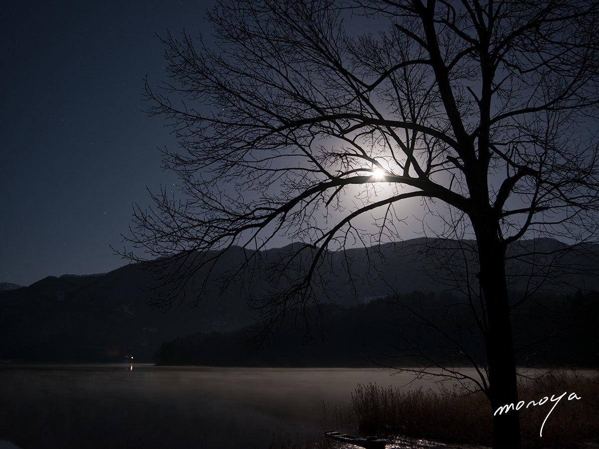 月明かり_c0085877_04361098.jpg