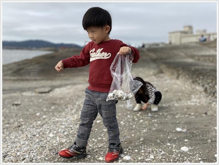 愛知県でのお出かけ その2 竹島海岸と竹島にある八百富神社 (11月24日)_b0175688_21455796.jpg
