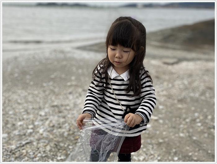 愛知県でのお出かけ その2 竹島海岸と竹島にある八百富神社 (11月24日)_b0175688_21460341.jpg