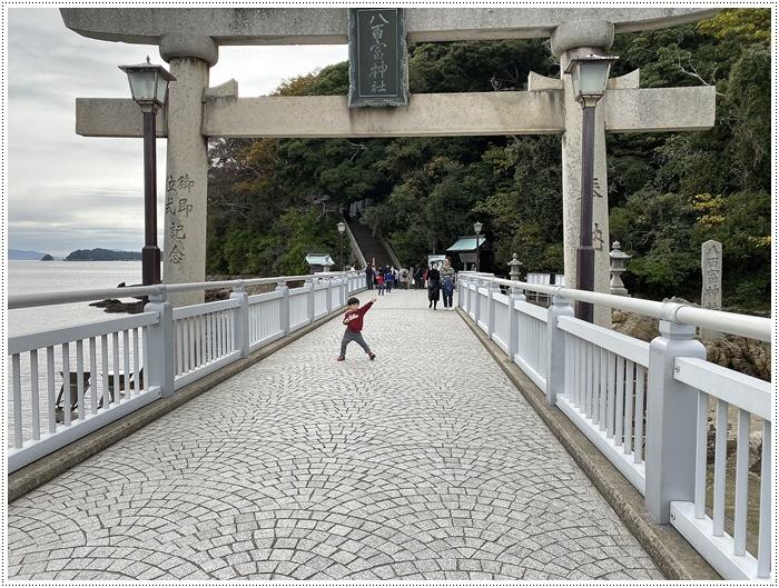 愛知県でのお出かけ その2 竹島海岸と竹島にある八百富神社 (11月24日)_b0175688_21505404.jpg