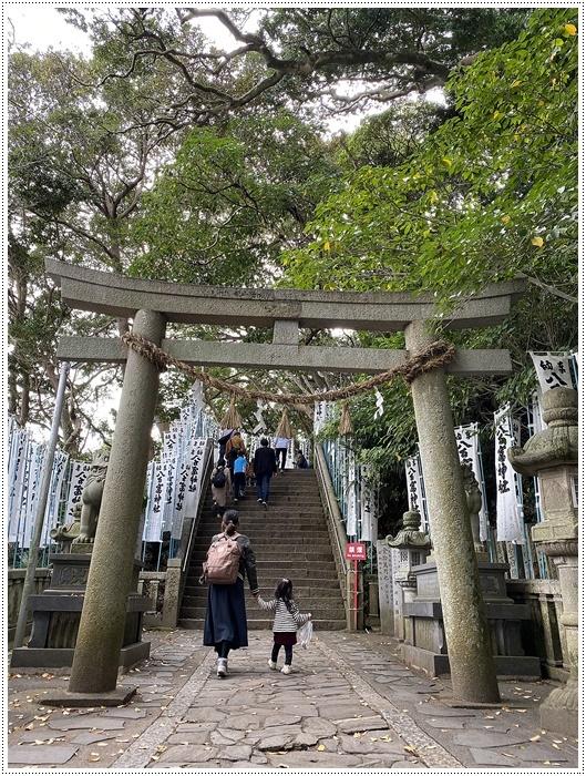 愛知県でのお出かけ その2 竹島海岸と竹島にある八百富神社 (11月24日)_b0175688_21515235.jpg