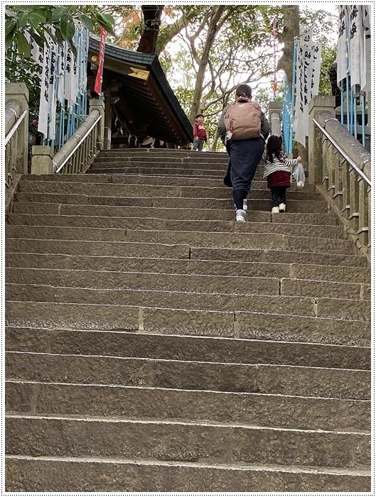 愛知県でのお出かけ その2 竹島海岸と竹島にある八百富神社 (11月24日)_b0175688_21521825.jpg
