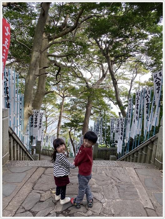 愛知県でのお出かけ その2 竹島海岸と竹島にある八百富神社 (11月24日)_b0175688_22060066.jpg