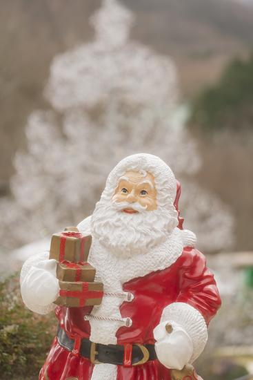 箱根ガラスの森美術館のクリスタルガラスのクリスマスツリー 昼編_b0145398_22213108.jpg