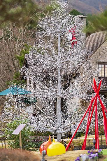 箱根ガラスの森美術館のクリスタルガラスのクリスマスツリー 昼編_b0145398_22240441.jpg